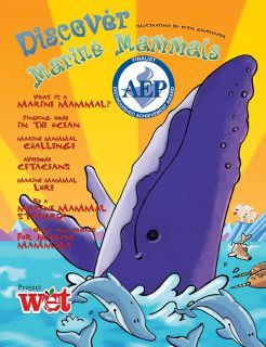 Discover Marine Mammals KIDs Activity Booklet
