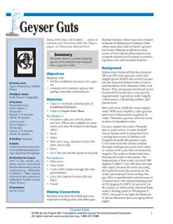 """Geyser Guts"" Activity, PDF DOWNLOAD"