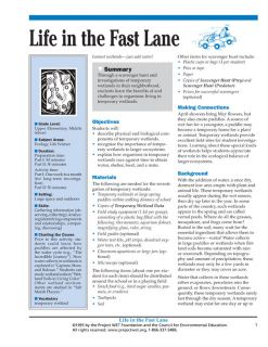 """Life in the Fast Lane"" Activity, PDF DOWNLOAD"