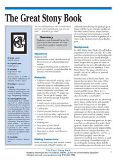 """""""The Great Stony Book"""" Activity, PDF DOWNLOAD"""